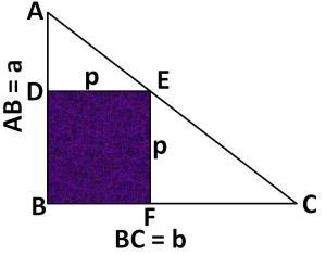 fig.bharat2